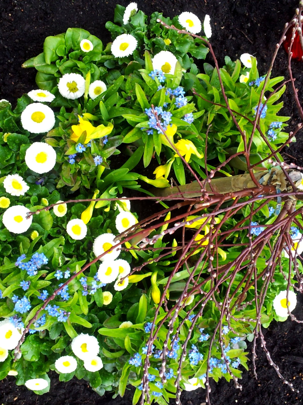 Frühlingsblumen mit Palmkätzchen