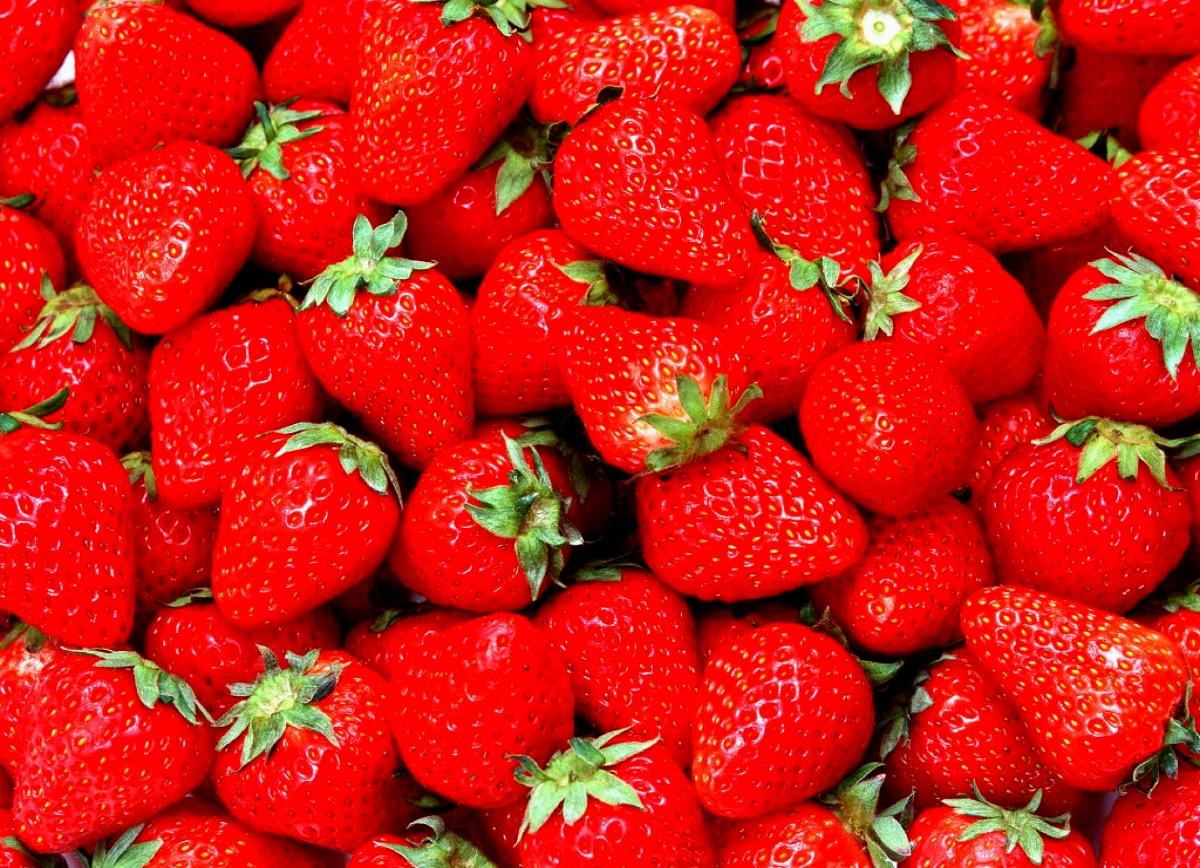 Erdbeeren auslesen